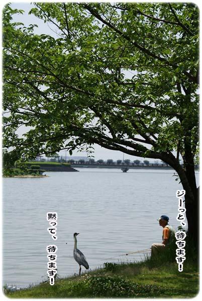 20110519_163.jpg