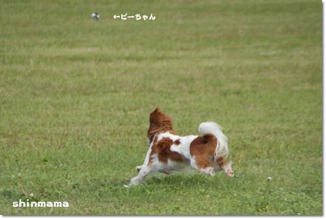 20110524_207.jpg