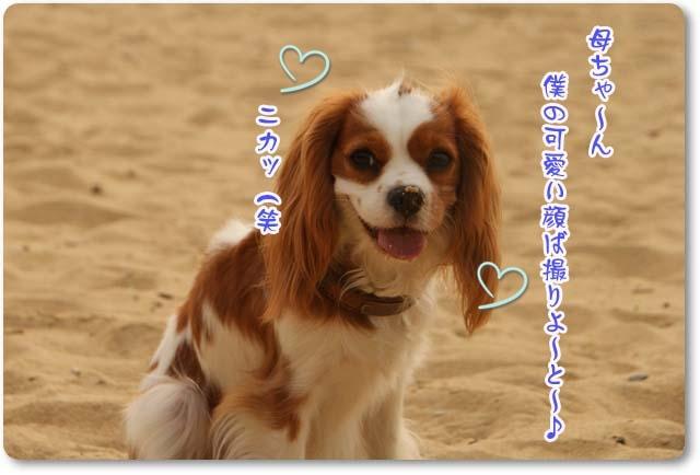 20110608_21.jpg
