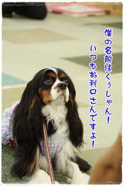20110618_44.jpg