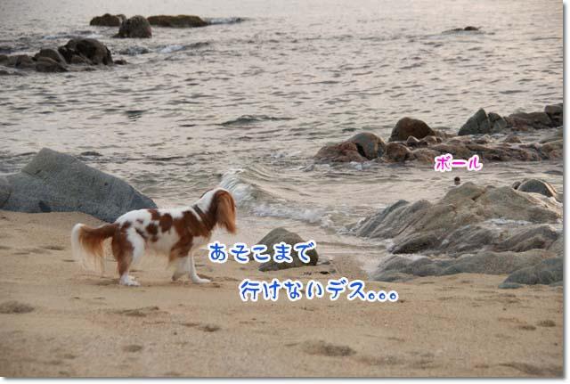20110715_131.jpg