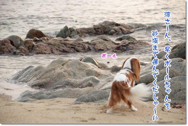 20110715_141.jpg