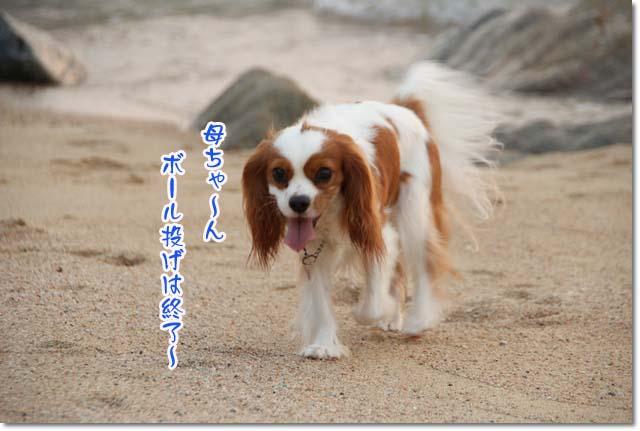 20110715_148.jpg
