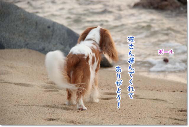 20110715_154.jpg