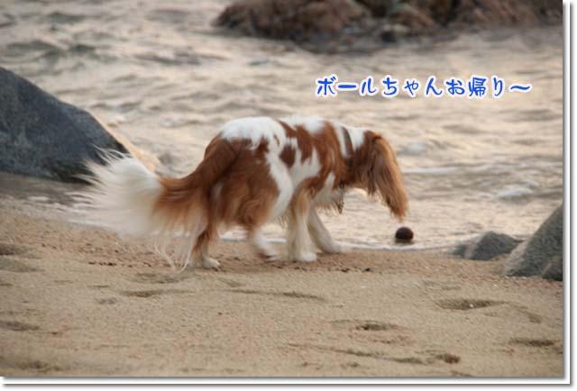 20110715_155.jpg