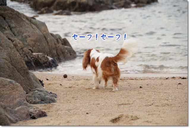 20110715_60.jpg