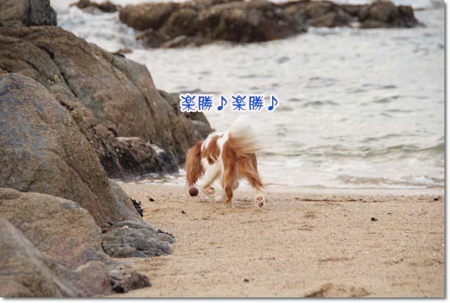 20110715_61.jpg