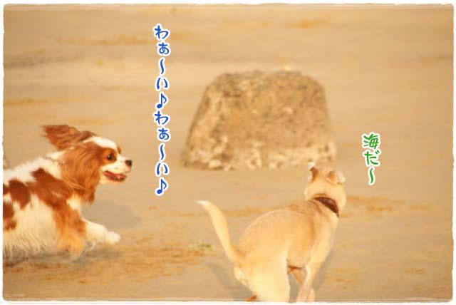 20110716_15.jpg