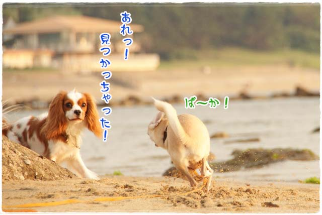 20110716_62.jpg