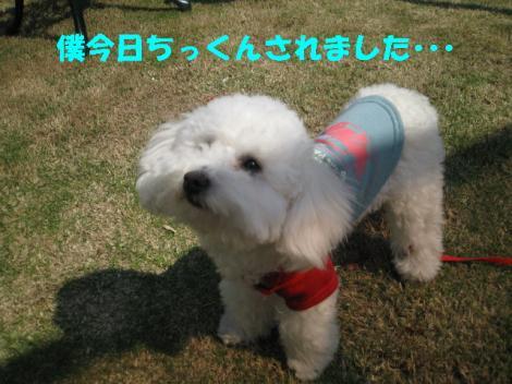 IMG_0761-2.jpg