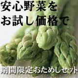 Oisix~有機野菜おためしセット