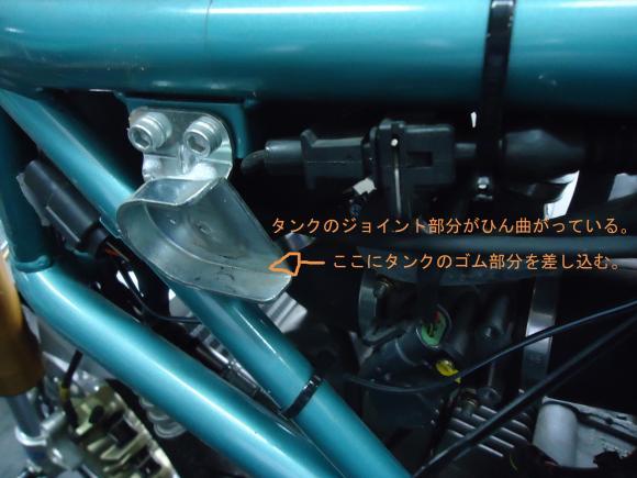 DSC00704_convert_20120323202918.jpg