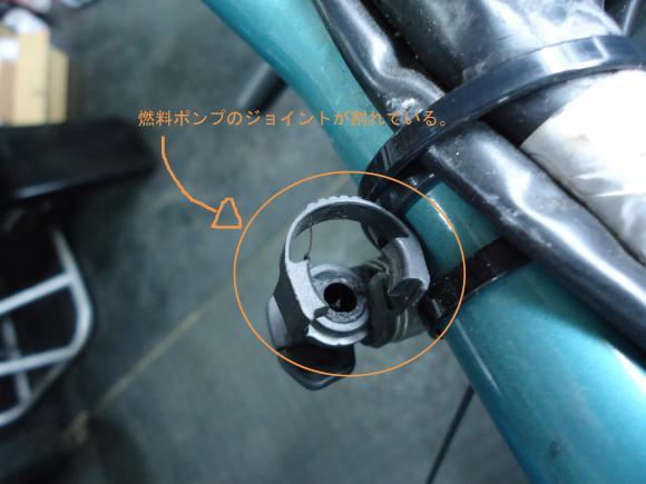 DSC00706_convert_20120323202956.jpg