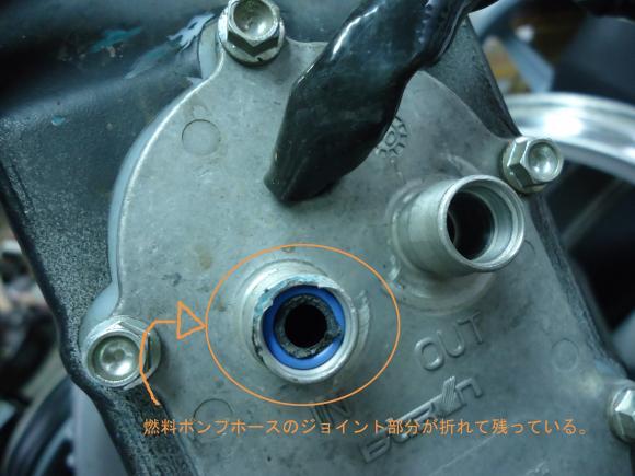 DSC00718_convert_20120323203104.jpg