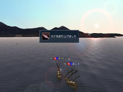 サケを釣り上げました