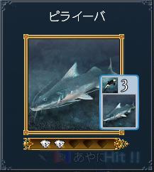 ピライーバ(発見260・カード65)