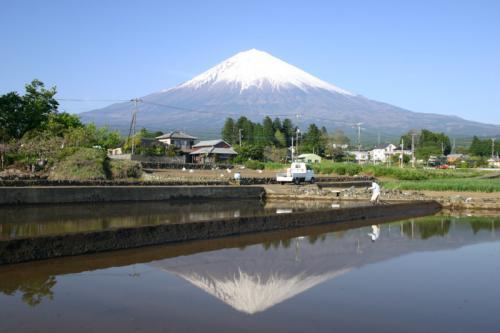 田んぼの逆さ富士