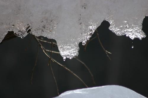 樹氷祭り001
