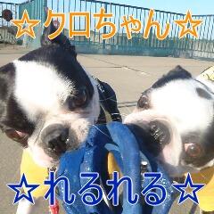 1_20110514151233.jpg