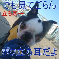 3_20110514151232.jpg