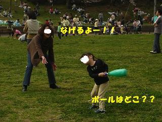DSC02814.jpg