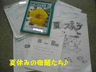 DSC03476.jpg