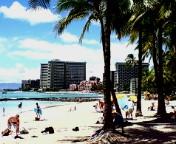 ハワイ 2007 2