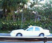 ハワイ 2007 9