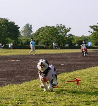 20070505-2.jpg