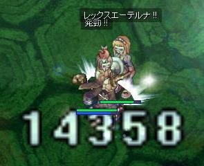 亀ペア狩り