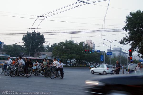 自転車の国だね。