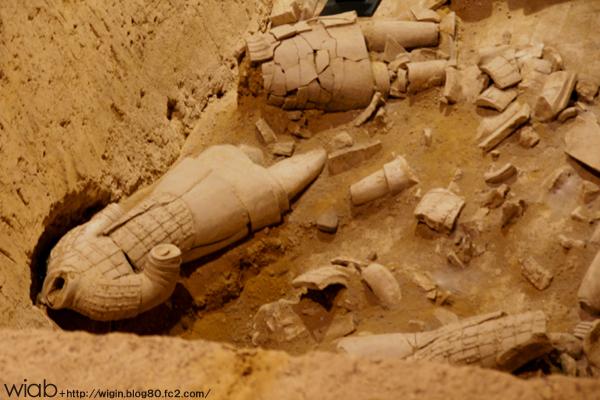 発掘途中に崩れてしまったりと、発掘は未だ困難だそう。