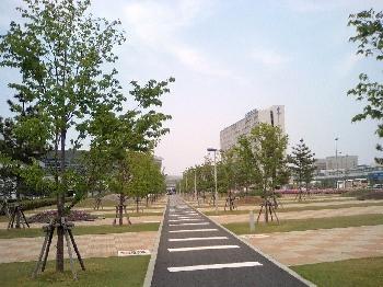 ターミナルへの散歩道