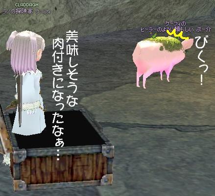 ぷー介危うし?!