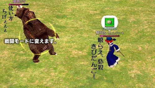 熊を挑発~