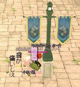 mabinogi_2007_06_14_002@.jpg