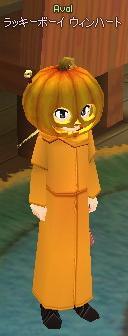 かぼちゃ一色