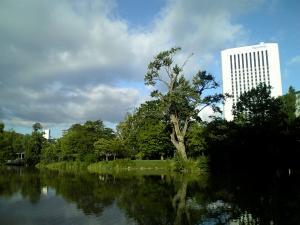 nakajima-park.jpg