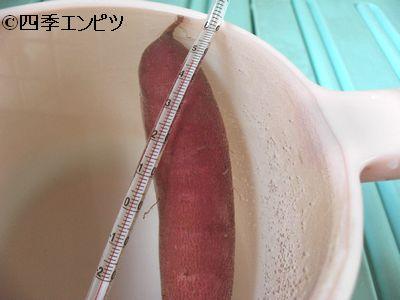 20110416 サツマイモ温浴 3