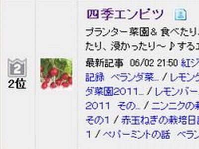 20110603 ブログ村ランキング 季節・四季 OUT順順位