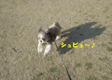 DSC04805.jpg