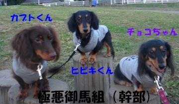gokuaku5.jpg