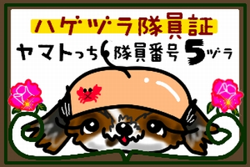 zura_05.jpg