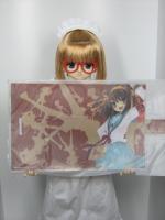 Haruhi_Bookcover.jpg