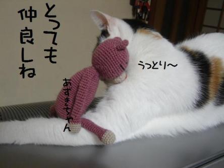 あずきちゃん&ミルク