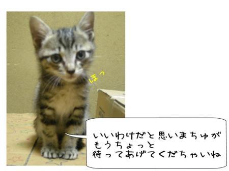 2007.10.1.3.jpg