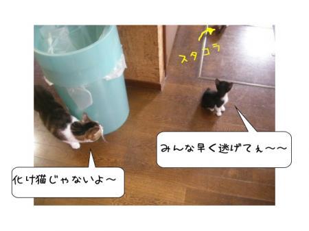 2007.10.11.3.jpg