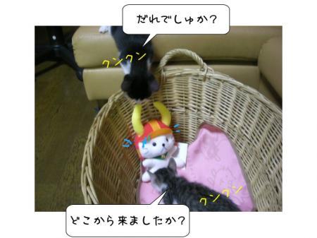 2007.10.11.7.jpg