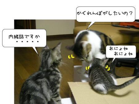 2007.10.13.7.jpg