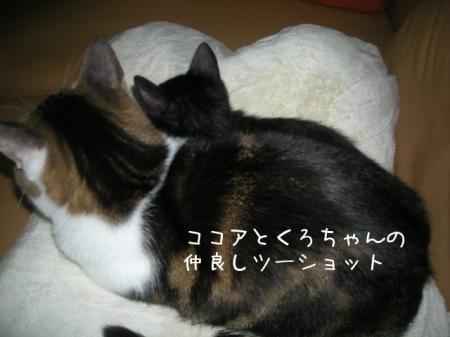 2007.10.13.9.jpg